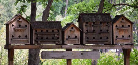 Handmade wooden bird houses on the tree in park Stock Photo