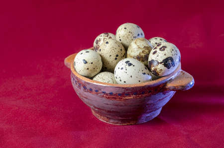 quail eggs photo