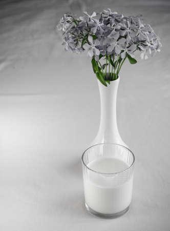 Milk and biscotti Stock Photo - 19796377