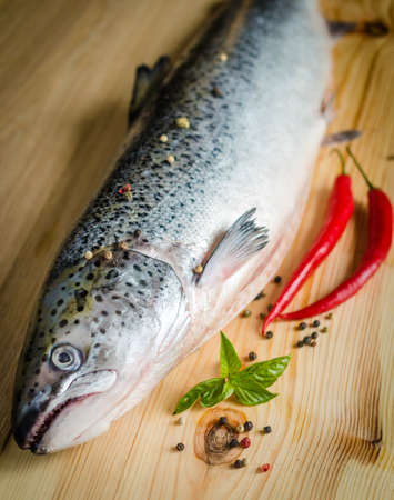 Fresh Atlantic Salmon whole fish on the table photo
