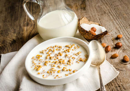 granola with milk photo