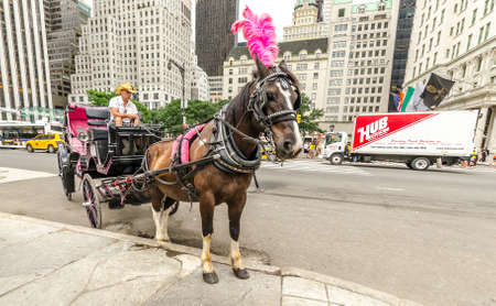 NEW YORK - JUL 17: Horse drawn carriage in Grand Army Plaza, NYC on July 17, 2014. Grand Army Plaza lies at the intersection of Central Park South and 5th Ave in front of the Plaza Hotel in Manhattan.