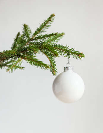 tree branch: christmas tree with decorates