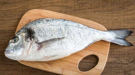 dorada: Fresh dorada fish