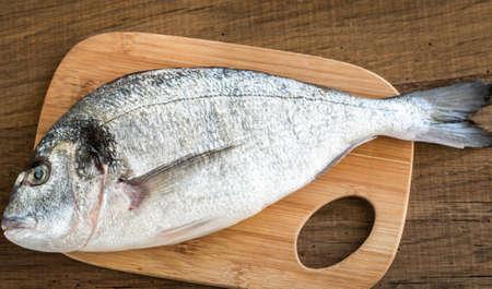 dorada: Dorada fish Stock Photo