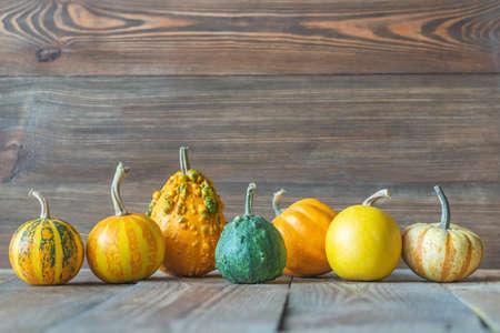 Assortment of ornamental pumpkins on the wooden background Banco de Imagens