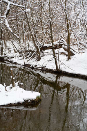 Quiet narrow river with snow-covered banks among thickets of bushes