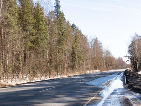 Forest along the asphalt road in early spring, natural background, 2021 Reklamní fotografie