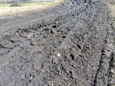 dirt road or track after heavy rain. concept of dirt roads.