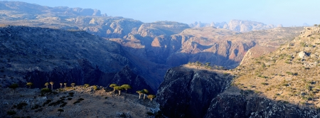 yemen: Yemen  Socotra island  Panorama of plateau Dixam Stock Photo