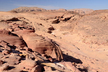 sinai desert: Sinai desert