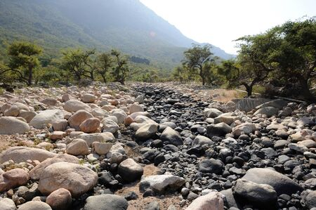 riverbed: Dry riverbed in canyon of Socotra island, Yemen.