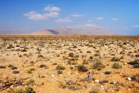 yemen: Sun-scorched landscape of the Socotra island, Yemen. Stock Photo