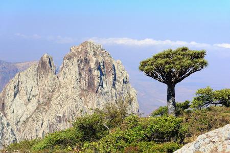 yemen: Yemen. Socotra island. Higghe mountains. Stock Photo