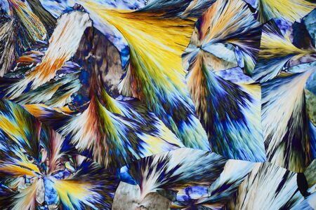 Photo through a microscope of crystals growing from the melt of stearic acid. Polarized light technology. Abstract art wallpaper. Background for design.
