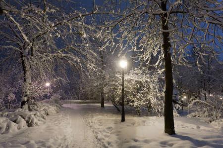 Winter park s červeným lavičky pokryté sněhem ve večerních hodinách. Reklamní fotografie - 12361390