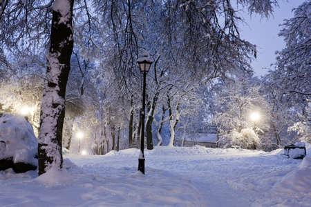 Winter park s červeným lavičky pokryté sněhem ve večerních hodinách.