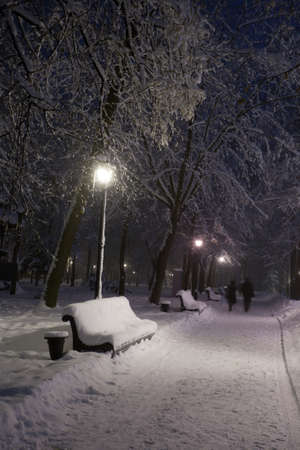 Winter park with red benches covered with snow in the evening. photo