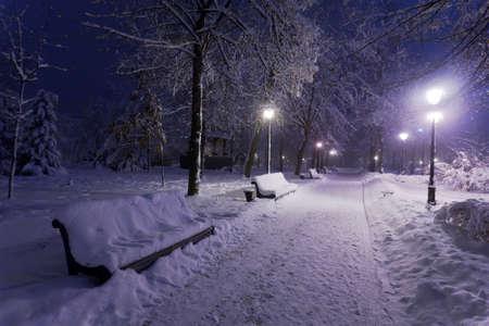 Winter park s červeným lavičky pokryté sněhem ve večerních hodinách. Reklamní fotografie - 12361393