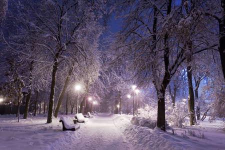 Winter Park con bancos rojos cubiertos de nieve en la noche.