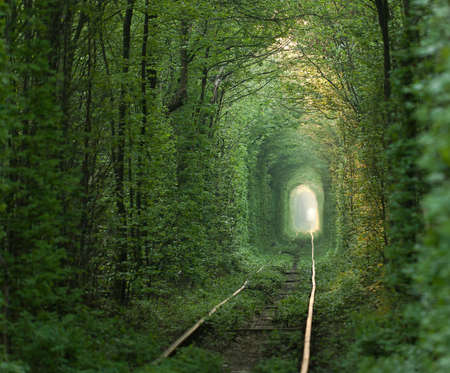 natural landmark: Natural tunnel of love formed by trees in Ukraine, Klevan  Stock Photo