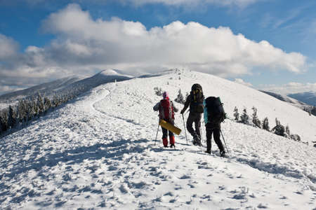 Group of hikers moving to the top in winter mountain. Stock Photo - 16702329