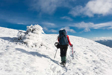 Hiker moving to the top in winter mountain. photo
