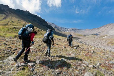 Hikers moving in snowy Kamchatka region, Russia.