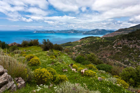 Magic landscape with sky, green grass and sea. Stock Photo - 21295993