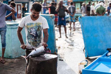 Tangalle, Sri Lanka - January 31, 2017: Man preparing raw fish at market in Sri Lanka.