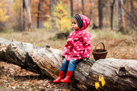 Little girl in autumn forest with basket, sitting on a tree. Fall day. Little girl in pea jacket exploring nature.