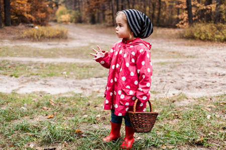 Little girl in autumn forest with basket, looking for the mushrooms. Fall day. Little girl in pea jacket exploring nature. Reklamní fotografie