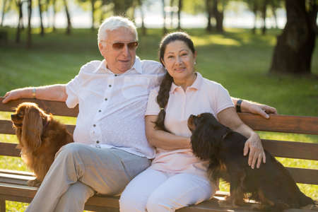 Senior couple relaxing in the park at sunny day with their two adorable dogs. Retired couple relax time. Two cavalier king charles spaniel dogs.