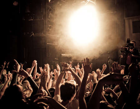 adulation: People at a concert waving hands