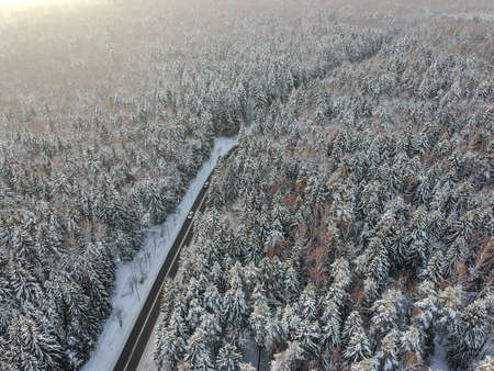 View from above on a winter forest with a road going through Standard-Bild