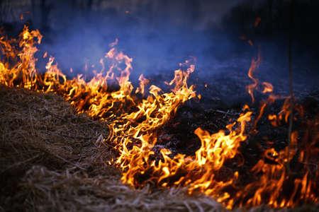 Ein Frühlingsfeuer. Brennendes Gras. Feld-Rauch-Hintergrund Standard-Bild