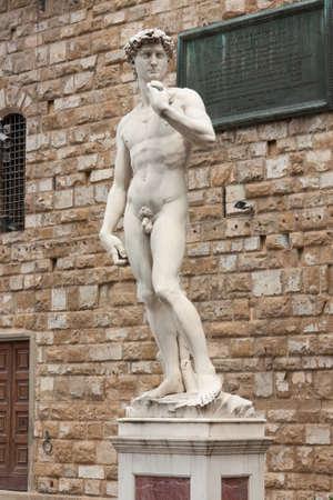 Famous statue of David in Pizza della Signoria in Firenze  photo