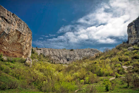 A small forest and green lawn on a background of massive mountains under the blue sky on the southern coast of Crimea photo