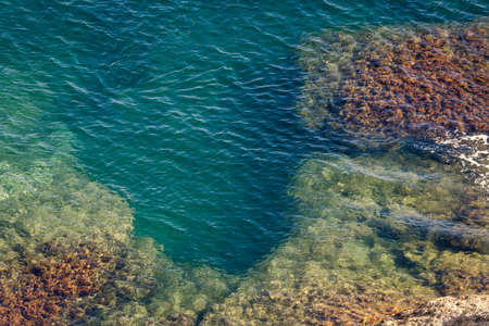 water's edge: Outskirts of the Black Sea coastline, rocky stones go into the water. Blue-green water of the sea and underwater plants