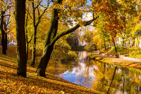 sunny day: Autumn scene in Riga, Latvia. City park with a pond and golden trees on a bright sunny day