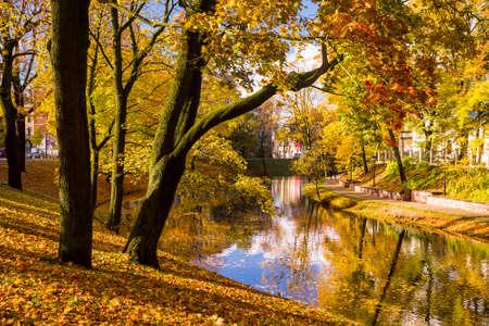 sunny day: Escena del oto�o en Riga, Letonia. Parque de la ciudad con un estanque y �rboles de oro en un d�a brillante y soleado