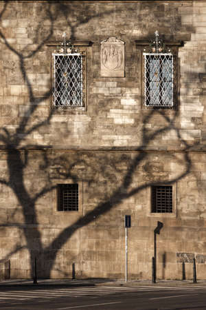 Brown brick wall of a historical building in Prague, Czech Republic and the shadow of a tree falls on a wall. Windows and Landmarks plate