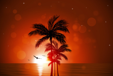 blurry lights: nature sunset background with palm trees and blurry lights Stock Photo