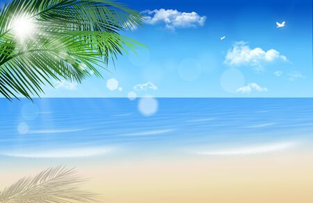 abstract summer sunny beach background with palms and blurrry lights Imagens