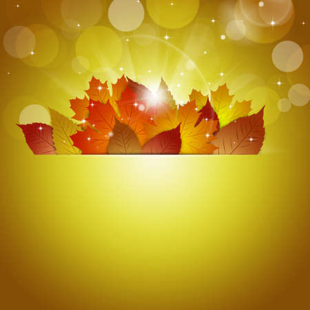 blurry lights: abstract sunshine autumn blurry lights holiday yellow background