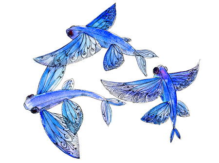 Round dance flying fish watercolor