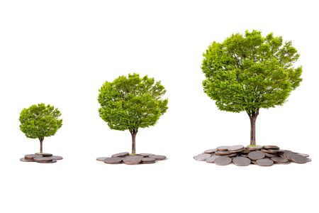 Isolated Tree glowing on heap of coins on white background. Saving for business investment with clipping path.