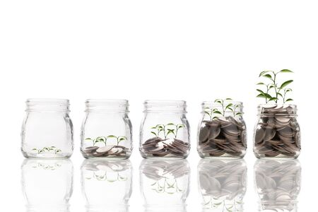 Increase trend graph of coins inside of jar with tree growth on white background. Dividend and profit from saving and investment concept. Zdjęcie Seryjne