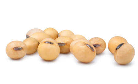 Isolated of yellow dried fresh soybeans on white background Zdjęcie Seryjne