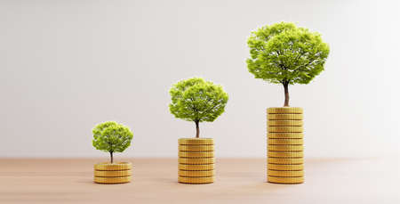 Growth tree on increasing of golden coins stacking on wooden table for investment and banking financial saving deposit concept by 3d rendering.